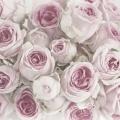 """Салфетка для декупажа SVD80061 """"Розовые розы"""", 33х33 см, Sagen Vintage Design, Норвегия"""