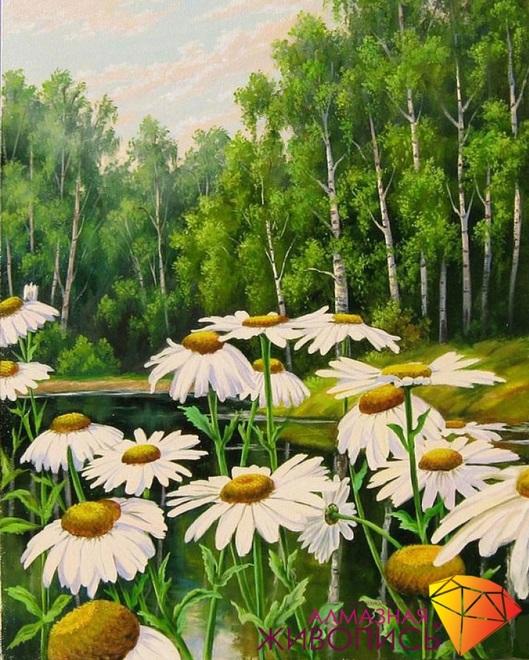 Картина стразами Ромашки у пруда Алмазная живопись
