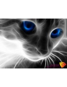 Картина стразами набор Кошачий взгляд - 40х30 см