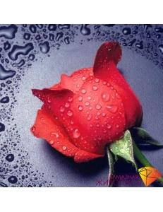 Картина стразами набор Красная роза - 22х24 см