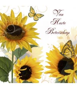"Салфетка для декупажа ""Солнечная бабочка"", 33х33 см, Голландия"