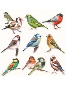 "Салфетка для декупажа ""Птицы"", 33х33 см, Голландия"
