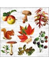 "Салфетка для декупажа ""Осенняя природа"", 33х33 см, Голландия"