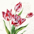 "Салфетка для декупажа ""Тюльпаны и текст"", 33х33 см, Голландия"