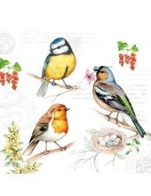 """Салфетка для декупажа """"Птицы в саду"""", 33х33 см, Голландия"""