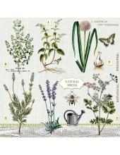 """Салфетка для декупажа """"Садовые травы"""", 33х33 см, Голландия"""