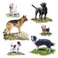 "Салфетка для декупажа ""Собаки"", 33х33 см, Голландия"