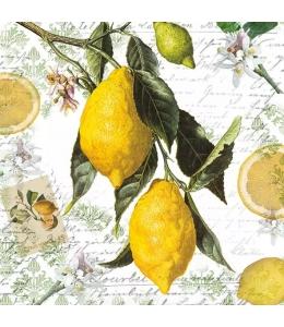 "Салфетка для декупажа ""Лимоны"", 33х33 см, Голландия"