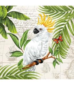 """Салфетка для декупажа """"Белый попугай"""", 33х33 см, Голландия"""