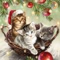 "Салфетка для декупажа ""Кошки в корзине"", 33х33 см, Ambiente (Голландия)"