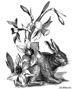 Штамп силиконовый на полимерном блоке LB1167 Rabbit with dafodils, 11,5x9 см, La Blanche