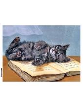 Рисовая бумага для декупажа Кошка на книге формат А5, Россия