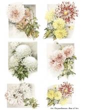 Декупажная карта А4 Chrysanthemum, Base of Art