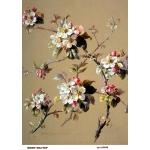 Рисовая бумага для декупажа Цветущая яблоня, А4, Бижу-Мастер, Россия
