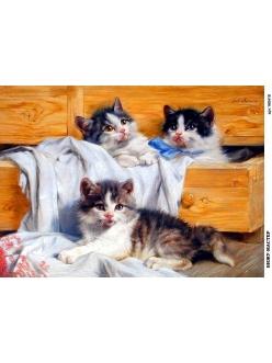 Рисовая бумага для декупажа 160418 Котята в комоде, А4, Россия