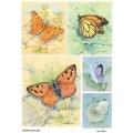 Рисовая бумага для декупажа 160531 Бабочки 1, А4, Бижу-Мастер, Россия