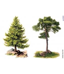 Рисовая бумага для декупажа 160618 Деревья, А4, Россия
