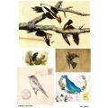 Рисовая бумага для декупажа 160632 Винтажные птицы, А4, Бижу-Мастер, Россия