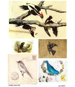 Рисовая бумага для декупажа Винтажные птицы, А4, Россия