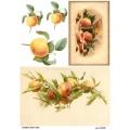 Рисовая бумага для декупажа 160650 Персики, А4, Бижу-Мастер, Россия