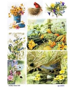 Рисовая бумага для декупажа 160651 Птички, А4, Россия