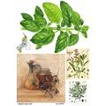 Рисовая бумага для декупажа Оливки и пряные травы, А4, Бижу-Мастер, Россия