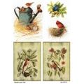 Рисовая бумага для декупажа Птицы, А4, Бижу-Мастер, Россия