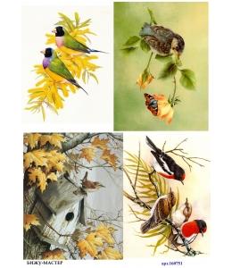 Рисовая бумага для декупажа Птицы на природе, А4, Россия