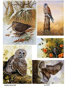 Рисовая бумага для декупажа Лесные птицы, А4,  Россия