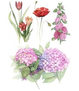 Рисовая бумага для декупажа AD001 Красные цветы, А4