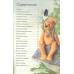 """Книга """"Медведи из полимерной глины. 20 оригинальных идей"""" Автор Бёди Хейвуд"""
