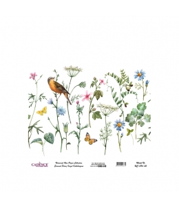 Рисовая бумага Universal Collection UC094 полевые цветы, Cadence 30х30 см