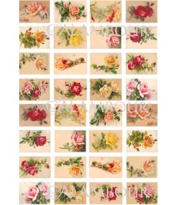 Рисовая бумага для декупажа Calambour DGR 154 Чайные роза ассорти мини, 33х48 см