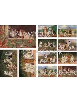 Рисовая бумага для декупажа Calambour DGR 167 Винтажные котята, 33х48 см