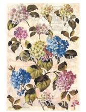 Рисовая бумага для декупажа Calambour DGR 187, Гортензия, письмо, ноты, 33х48 см