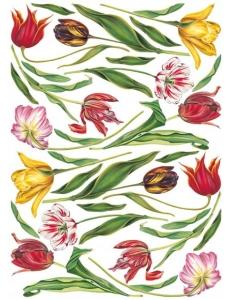 "Декупажная карта Calambour EXC 109 ""Тюльпаны на белом фоне"", 35х50 см"