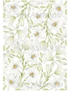 "Рисовая бумага для декупажа Calambour Pau-018 ""Белые цветы"", 35х50 см, 20 г/ м2"