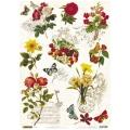 """Рисовая бумага """"Бабочки, цветы, орнамент"""", 21x29,7см Craft Premier"""
