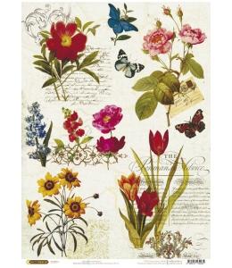 """Рисовая бумага CP04235 """"Цветы и старые тексты"""", 28,2х38,4см, Craft Premier (Россия)"""