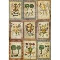"""Рисовая бумага CPD030 """"Средневековая ботаника"""", 21x29,7см Craft Premier"""