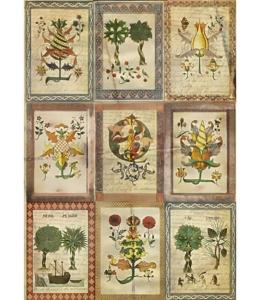 """Рисовая бумага """"Средневековая ботаника"""", 21x29,7см Craft Premier"""