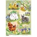 """Рисовая бумага """"Цыплята и кролики"""" 21×29,7 см, Craft Premier"""