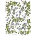 """Декупажная карта Decomania №046 bis """"Плющ и голубой вьюнок"""", 30х42см"""