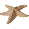 Заготовка фигурка из папье-маше Морская звезда, 10х110х2 см, Decopatch (Франция)