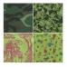 Бумага для декопатч блокнот Зеленый 15х19 см, 48 листов, 12 дизайнов, Decopatch