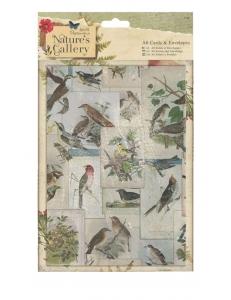 Набор заготовок для открыток с конвертами Nature's Gallery, 10,5х14,8 см