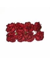 Цветы для скрапбукинга Гвоздики бумажные бордовые, 8 штук, ScrapBerry's