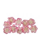 Цветы вишни розовые с белым для скрапбукинга, 10 шт., ScrapBerry's