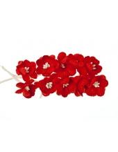 Цветы вишни красные для скрапбукинга, 10 шт., ScrapBerry's