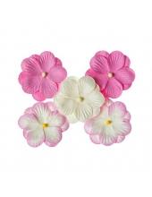 Набор двойных цветов Анютины глазки, розовый, 5 шт., ScrapBerry's